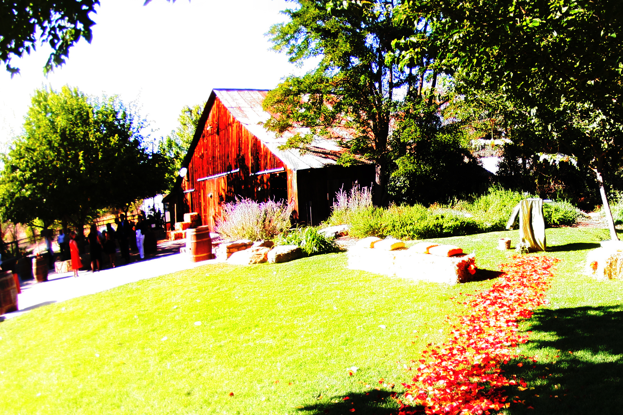 Paso Robles Has Many Properties With Barns Available For Your Special Event Ranging From One To 100 Years Old Can Offer History And Quaintness