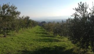 Kiler Ridge 3