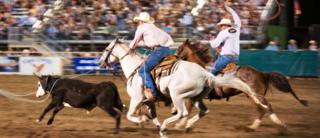 PHOTO-RodeoWEB