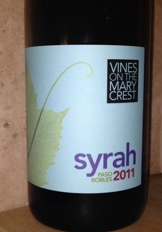 Syrah-vines on the marycrest